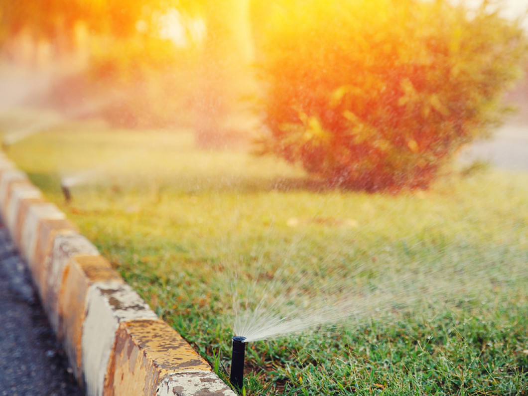 Choose Us for Affordable Irrigation Installation & Irrigation Repair